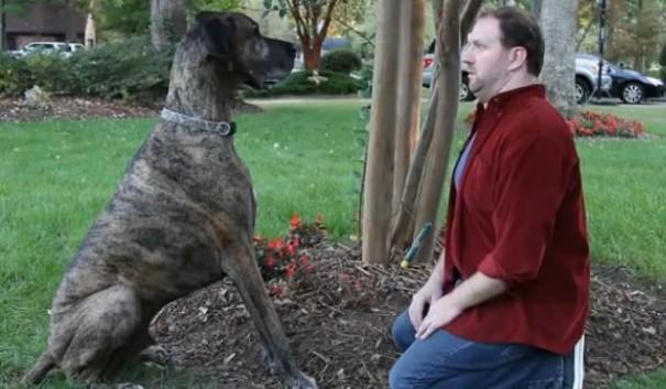 דוריטוס - אדם מול כלב - סופרבול