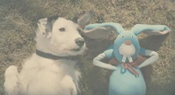 הכלב והארנב