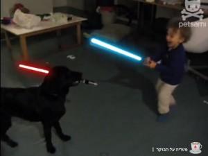 ילד נגד כלב