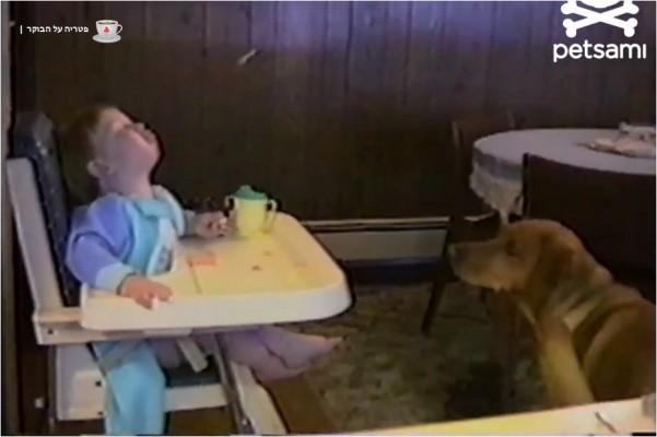 חיות וילדים
