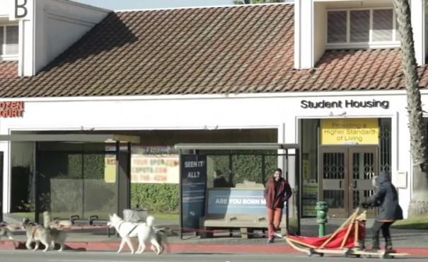 תחנת אוטובוס מגניבה