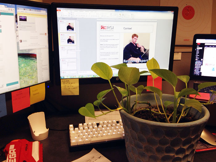 guy-babysits-coworkers-plant-19