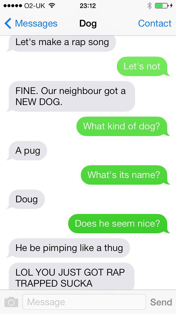 טקסטים מהכלב 15