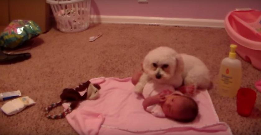 שומר על התינוק