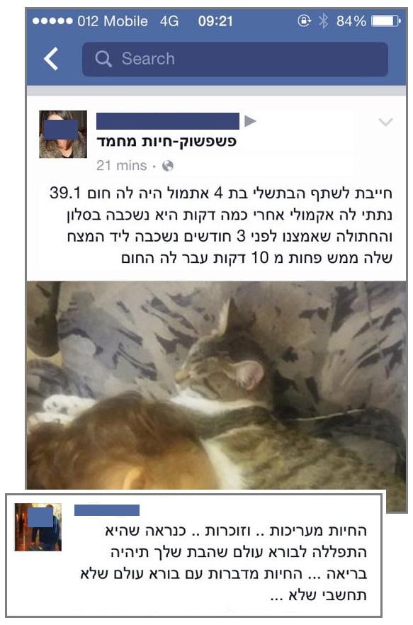 Moriel Shapira - שמיאו ישראל