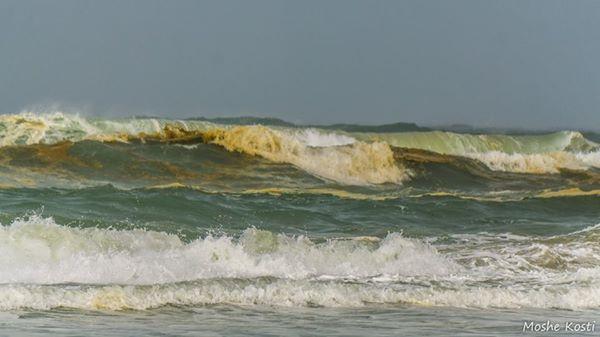זיהום בחוף פלמחים 1