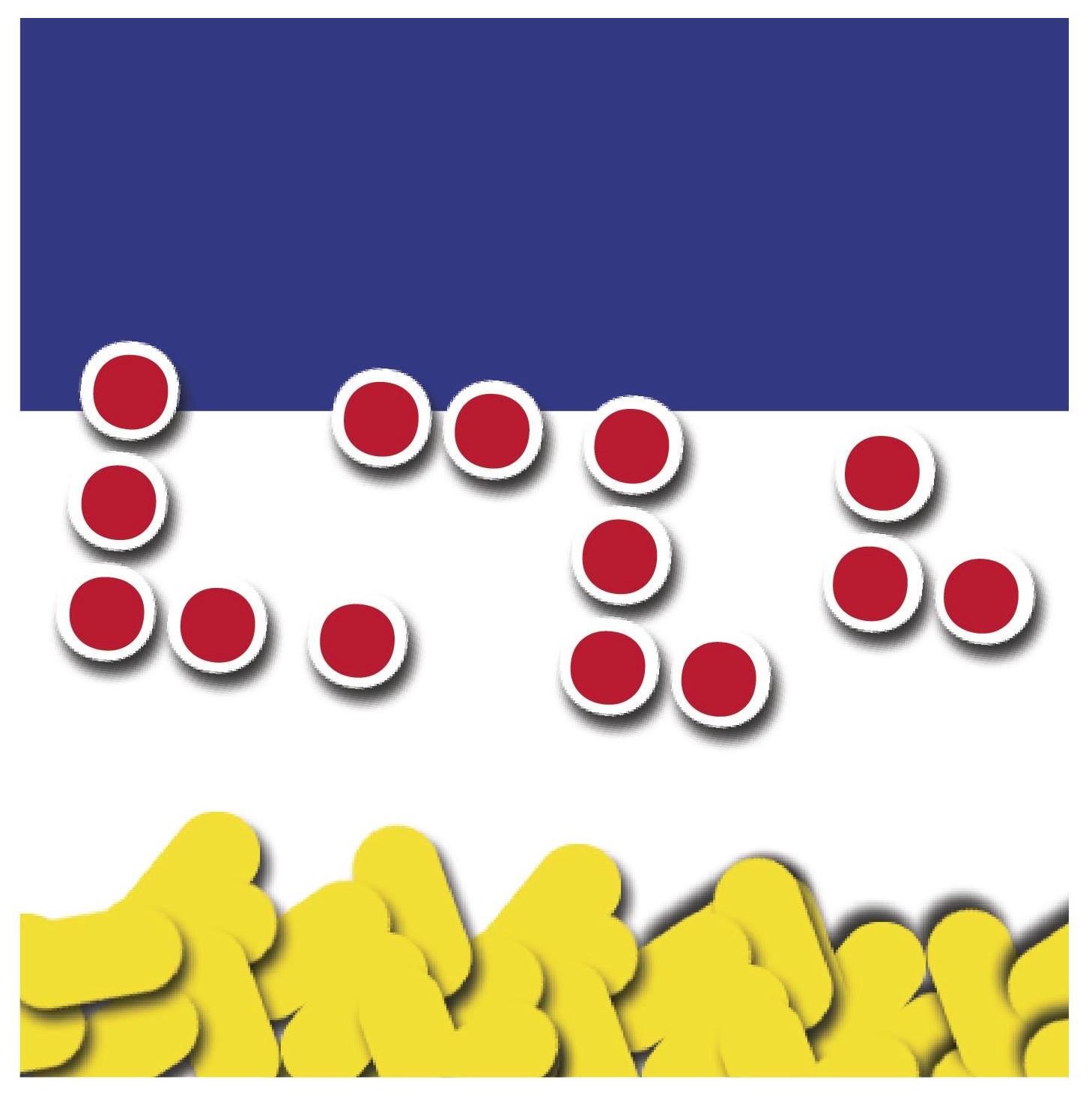 לוגואים בכתב ברייל 10