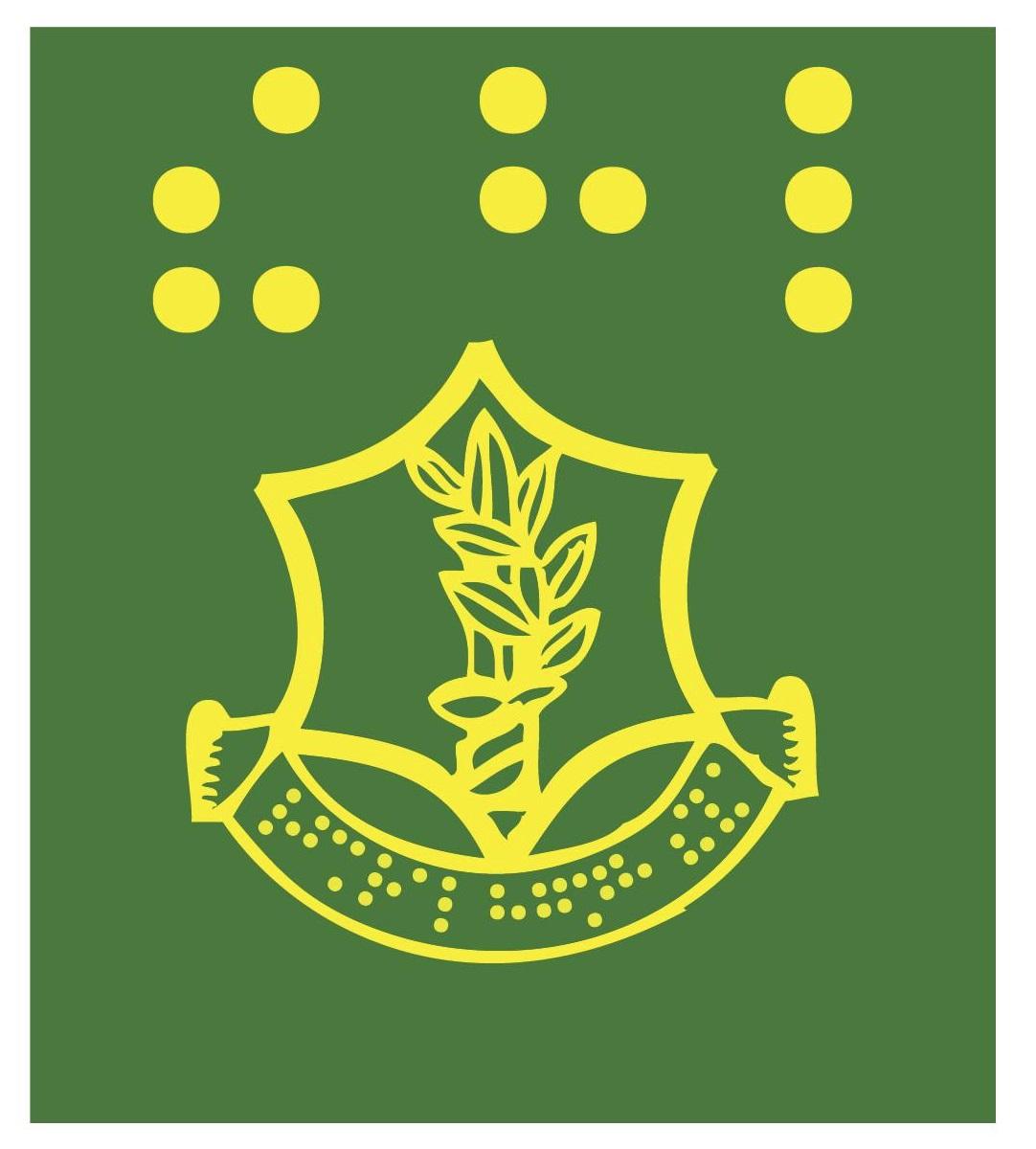 לוגואים בכתב ברייל 11