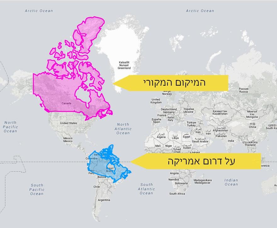 מפות מעוותות 9