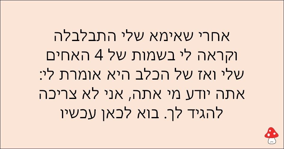 משפטים של אימהות 22