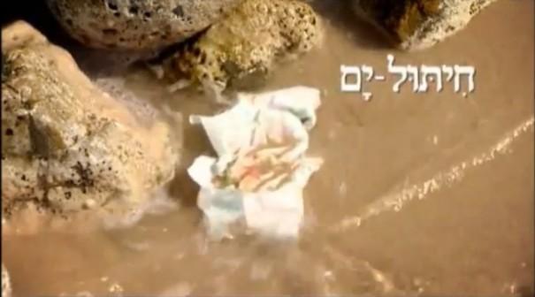 הירוקים חיתול ים