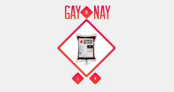 הומו או לא 2