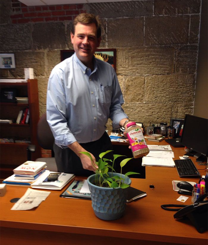 guy-babysits-coworkers-plant-22