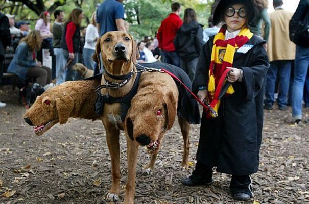 תחפושות לפורים - ילדים - הארי פוטר