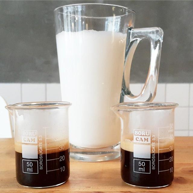 בית קפה שובר שורות 2
