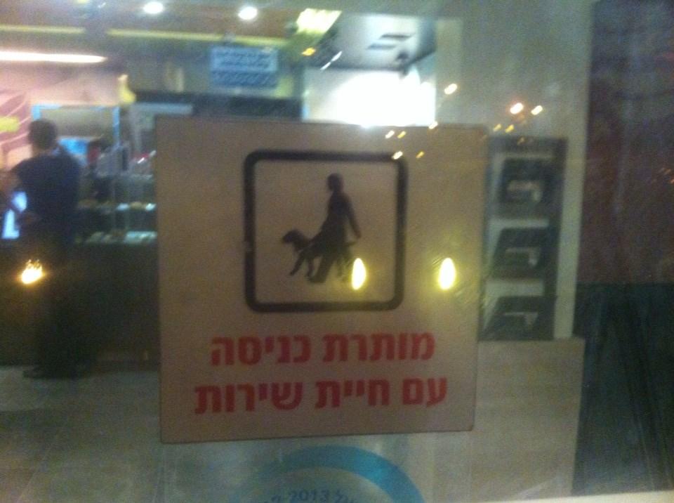 איזו חיית שירות יש מעבר לכלב ומי אמור לראות את השלט הזה בכלל - Dror Yanai