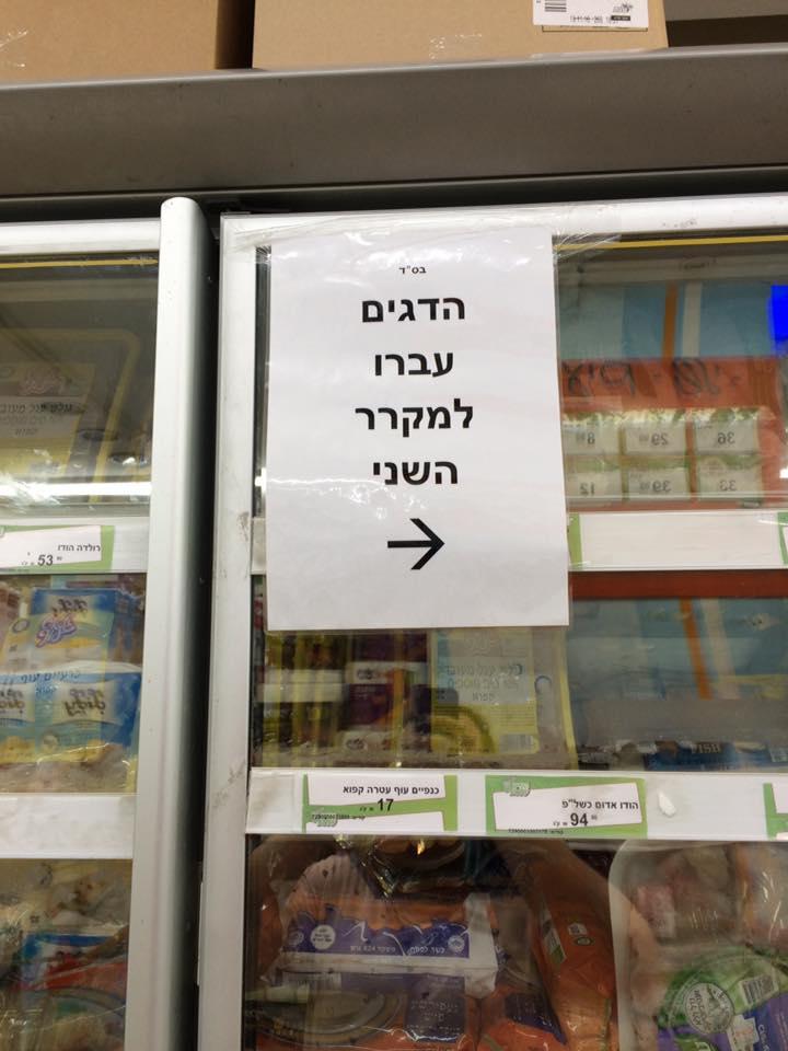 Yael Neishty Neishtut Yermiyahu - עכשיו גרה כאן משפחת כהן, בבקשה לא לצלצל יותר