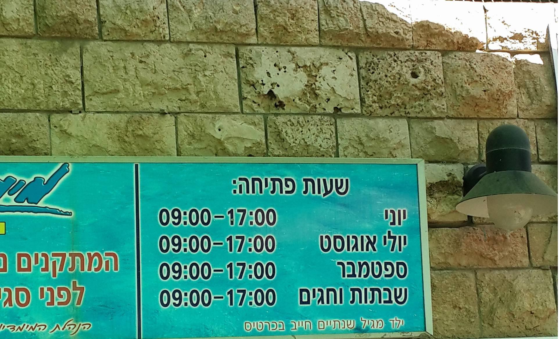Elad Cohen - שעות פתיחה ממדיון