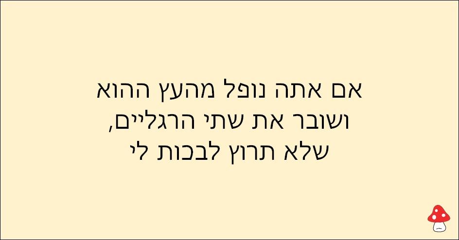 משפטים של אימהות 4