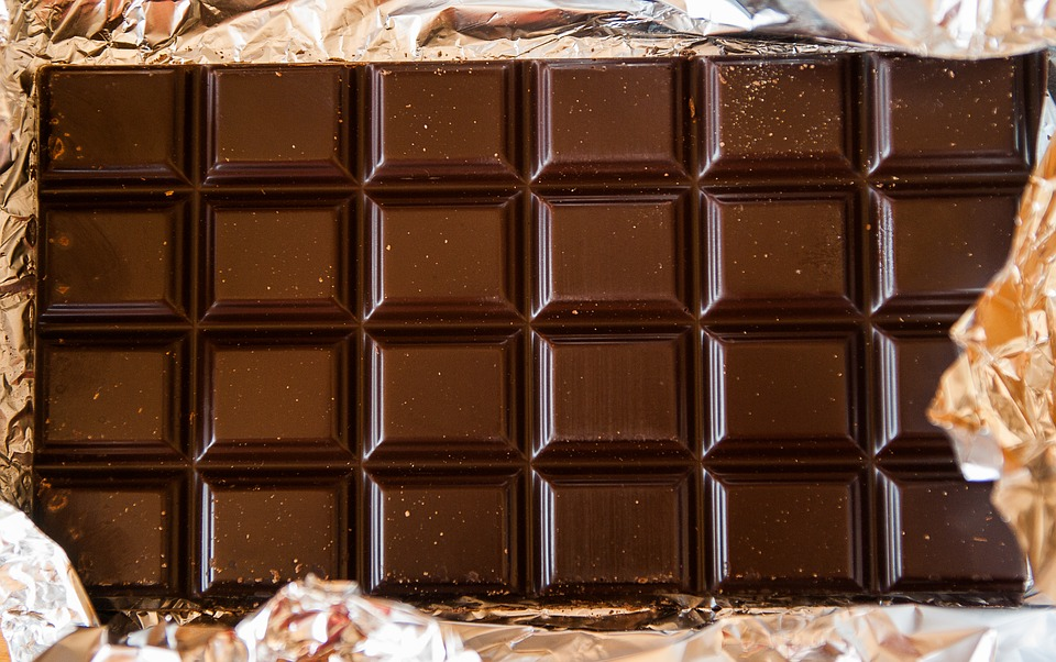 שוקולד לכלב